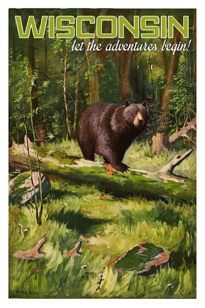 Bear Wisconsin WIPB - Framed Artwork from Interior Elements, Eagle WI