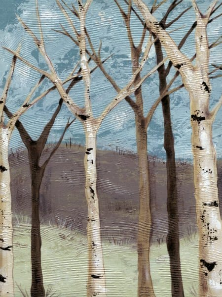 Birch Trees SSBT4 - Framed Scenery Artwork from Interior Elements, Eagle WI