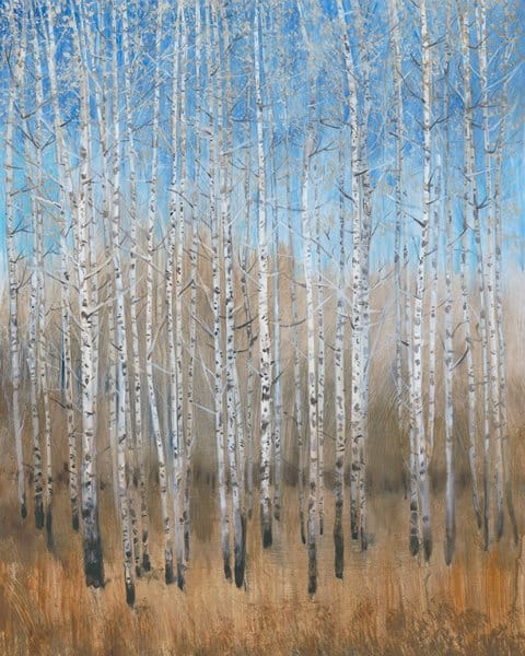 Birch Trees SSSB1 - Framed Scenery Artwork from Interior Elements, Eagle WI
