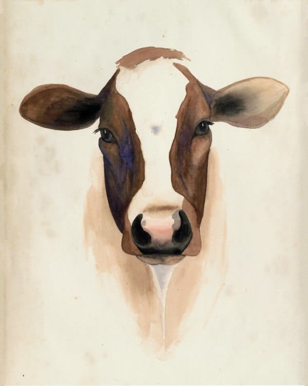 Cow SSWC - Framed Artwork from Interior Elements, Eagle WI
