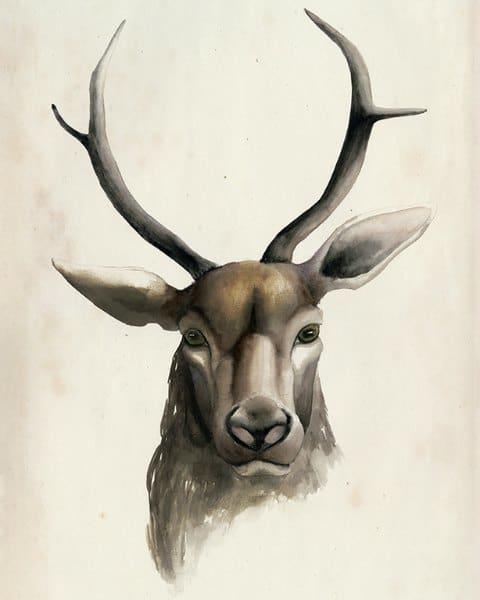 Deer SSWD1 - Framed Artwork from Interior Elements, Eagle WI
