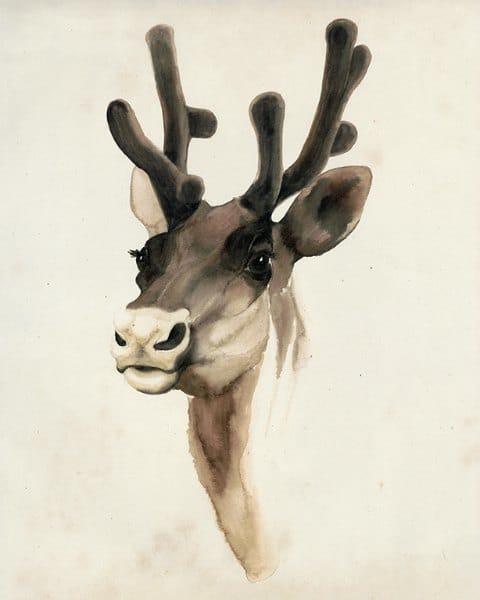 Deer SSWD3 - Framed Artwork from Interior Elements, Eagle WI