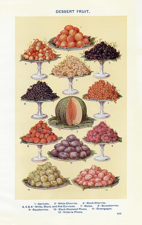 Food - Dessert Fruit BFDF - Framed Vintage Artwork from Interior Elements, Eagle WI