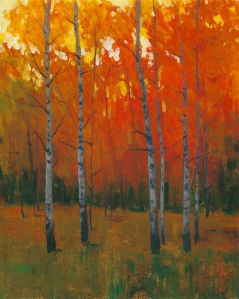 Forest Trees SSOF1 - Framed Scenery Artwork from Interior Elements, Eagle WI