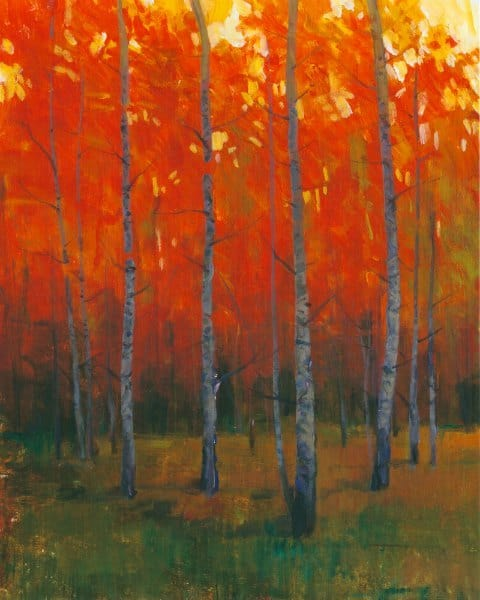 Forest Trees SSOF2 - Framed Scenery Artwork from Interior Elements, Eagle WI