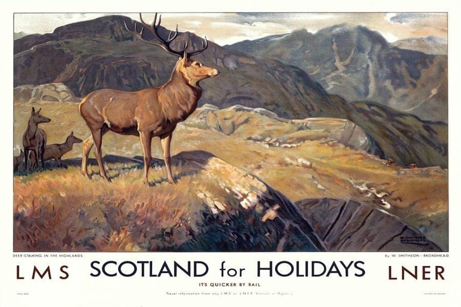Scotland Deer EPSH - Framed Vintage Artwork from Interior Elements, Eagle WI