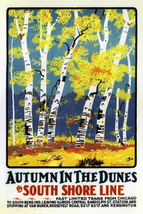 Chicago-South-Shore-Line-Autumn-in-the-Dunes-CHISS1 - Framed Artwork from Interior Elements, Eagle, WI