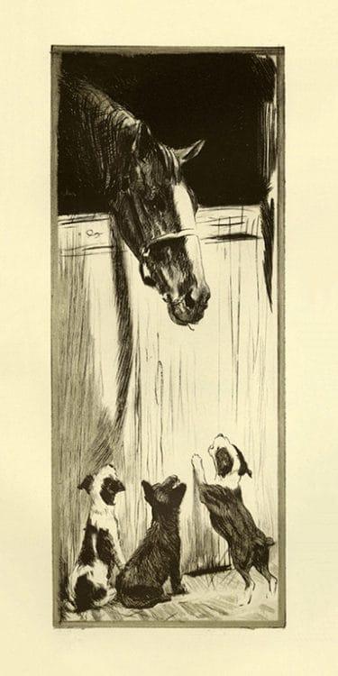 Diana-Thorne-Dogs-DT1 - Framed Artwork from Interior Elements, Eagle, WI