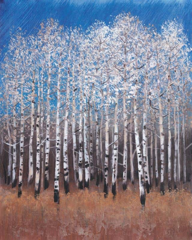 Cobalt Birches II 20x25 Framed Artwork from Interior Elements, Eagle WI