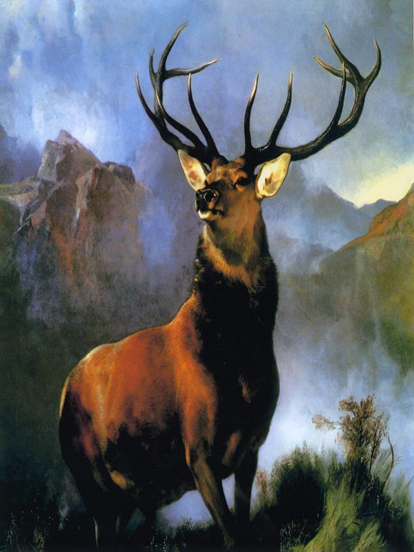 Deer 1 36x48 Framed Artwork from Interior Elements, Eagle WI