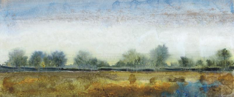 Ethereal Landscape I 15x36 Framed Artwork from Interior Elements, Eagle WI
