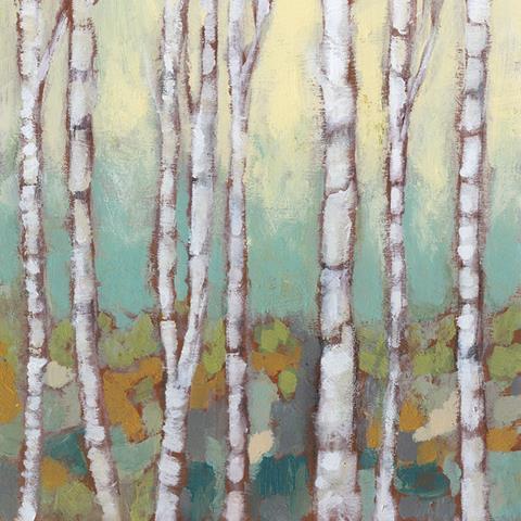 New Birches 1